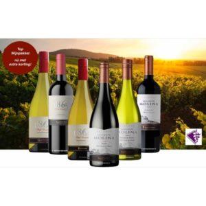 Top Wijnpakket VSP uit Chili Nieuwsbrief April 2020