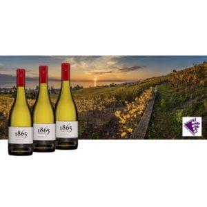 Viña San Pedro 1865 Chardonnay 2016 Doos 5 + 1 Gratis